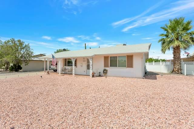 11041 W Cherry Hills Drive, Sun City, AZ 85351 (MLS #6087331) :: Revelation Real Estate