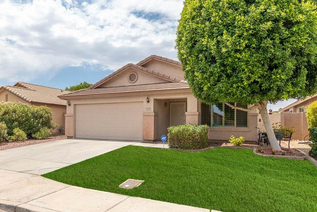 8138 W Tonto Lane, Peoria, AZ 85382 (MLS #6087737) :: Dijkstra & Co.