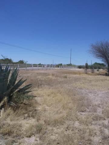 3907 N 424TH Avenue, Tonopah, AZ 85354 (MLS #6087978) :: The Luna Team