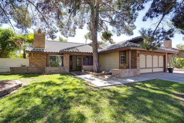 943 N Senate Street, Chandler, AZ 85225 (MLS #6088880) :: Klaus Team Real Estate Solutions