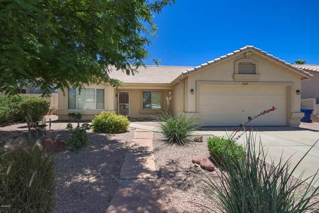 6629 E Menlo Street, Mesa, AZ 85215 (#6088981) :: AZ Power Team | RE/MAX Results