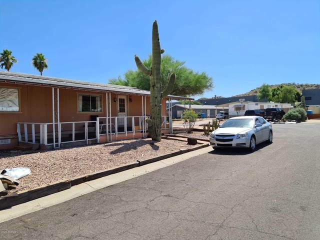 19429 N 25th Street, Phoenix, AZ 85050 (MLS #6089357) :: Lifestyle Partners Team