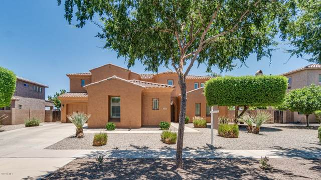23191 S 204TH Street, Queen Creek, AZ 85142 (MLS #6090077) :: Lux Home Group at  Keller Williams Realty Phoenix