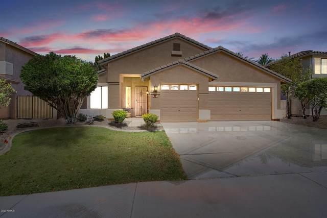 5379 S Scott Place, Chandler, AZ 85249 (#6090300) :: AZ Power Team   RE/MAX Results