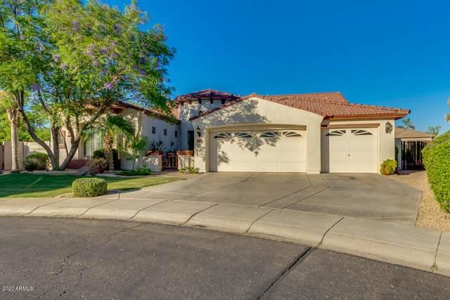 5621 N Lyle Court, Litchfield Park, AZ 85340 (MLS #6091301) :: REMAX Professionals