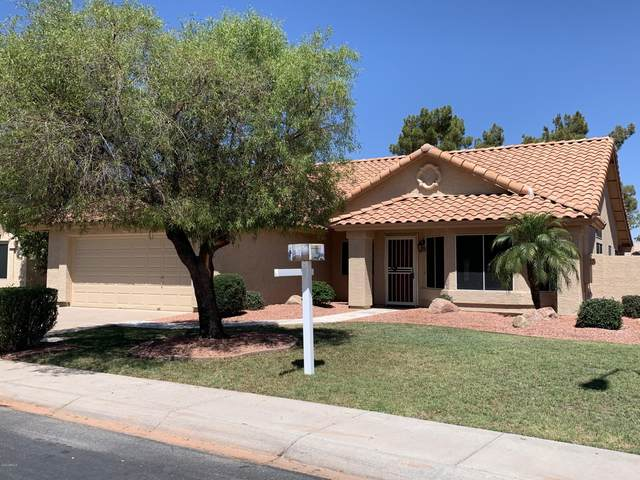 3640 S Acacia Drive, Chandler, AZ 85248 (MLS #6092732) :: Brett Tanner Home Selling Team