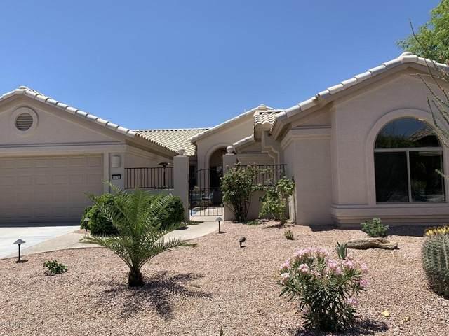15751 W Merrell Street, Goodyear, AZ 85395 (MLS #6093054) :: Sheli Stoddart Team | M.A.Z. Realty Professionals