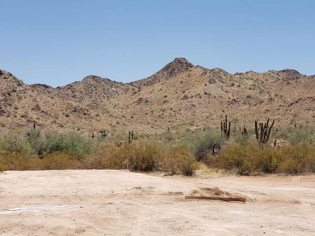 33361 N Vaquero Court, Queen Creek, AZ 85142 (MLS #6093307) :: Klaus Team Real Estate Solutions