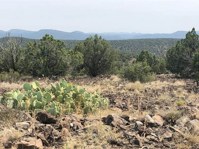 Lot 246 Quail Call Lane, Kingman, AZ 86401 (MLS #6093642) :: Midland Real Estate Alliance