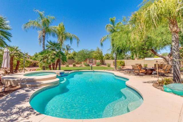 2627 E Encinas Avenue, Gilbert, AZ 85234 (MLS #6093823) :: Klaus Team Real Estate Solutions