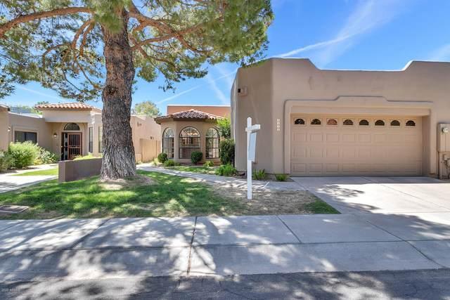4111 E Altadena Avenue #113, Phoenix, AZ 85028 (MLS #6093970) :: Nate Martinez Team