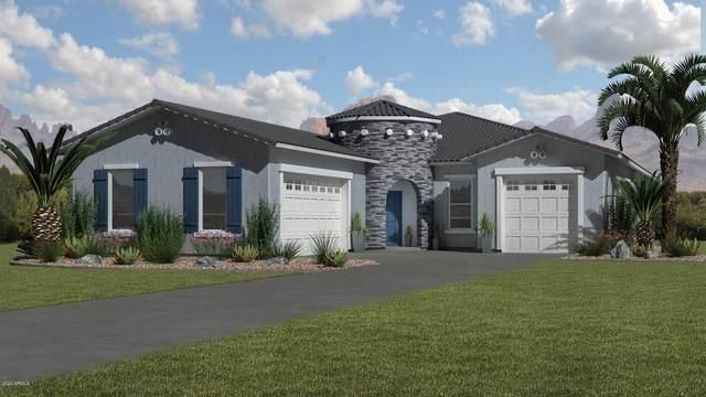 1345 W Catherine Lane, Queen Creek, AZ 85142 (MLS #6093994) :: Conway Real Estate