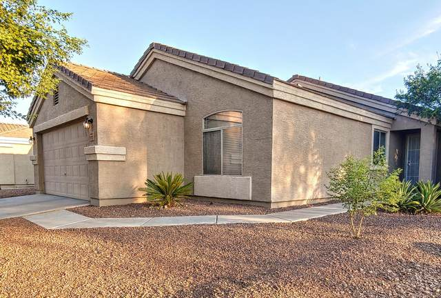 11712 W Tierra Grande, Sun City, AZ 85373 (MLS #6094423) :: Riddle Realty Group - Keller Williams Arizona Realty