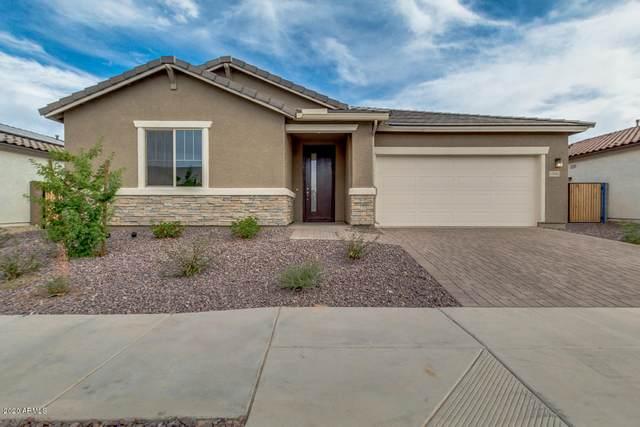 17695 W Buchanan Street, Goodyear, AZ 85338 (MLS #6095144) :: The Riddle Group