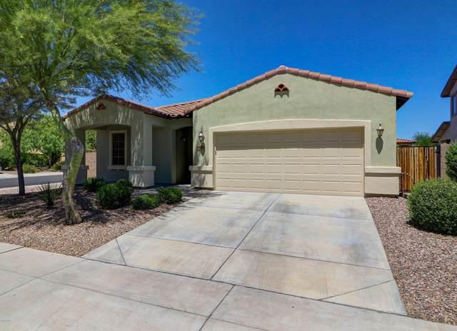 29683 N 127TH Lane, Peoria, AZ 85383 (MLS #6095486) :: Howe Realty