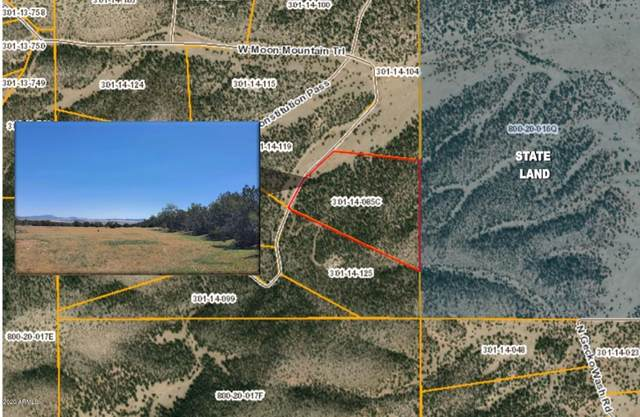 0 W Moon Mountain Trail, Seligman, AZ 86337 (MLS #6095866) :: Brett Tanner Home Selling Team