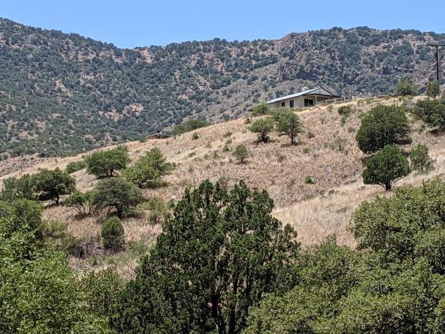 3233 W Highway 80, Bisbee, AZ 85603 (MLS #6096195) :: Service First Realty