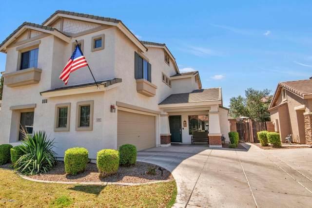 1081 E Redwood Drive, Chandler, AZ 85286 (MLS #6096621) :: Keller Williams Realty Phoenix