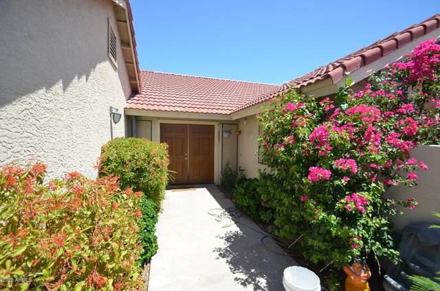 10812 E Sleepy Hollow Trail, Gold Canyon, AZ 85118 (MLS #6096774) :: Arizona Home Group
