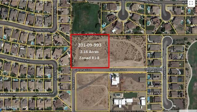 XXXX N 71st Avenue, Peoria, AZ 85383 (MLS #6096919) :: Arizona Home Group