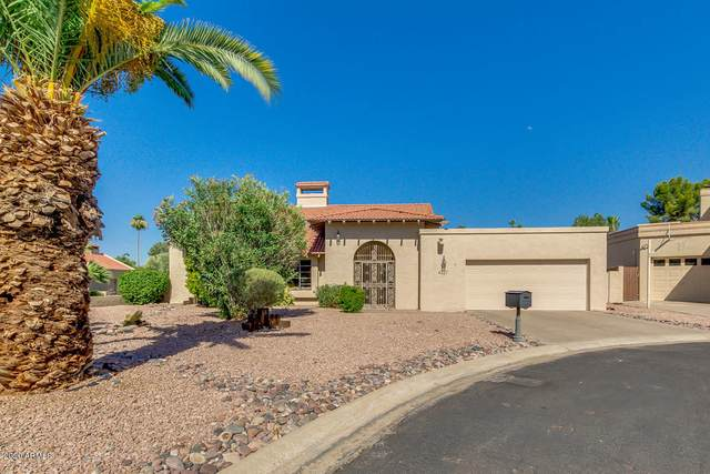 4327 E Lupine Avenue, Phoenix, AZ 85028 (MLS #6097245) :: Nate Martinez Team