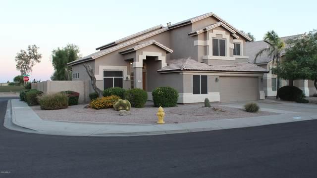 13741 W Vernon Avenue, Goodyear, AZ 85395 (MLS #6097907) :: Brett Tanner Home Selling Team