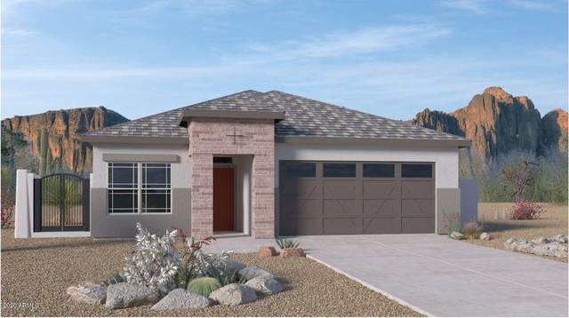 8859 S 166TH Avenue, Goodyear, AZ 85338 (MLS #6098961) :: Nate Martinez Team