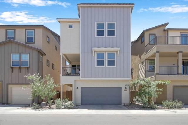 731 W Winchester Drive, Chandler, AZ 85286 (MLS #6099162) :: Kepple Real Estate Group