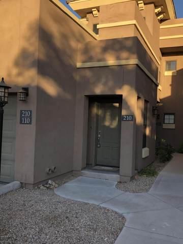 295 N Rural Road #210, Chandler, AZ 85226 (MLS #6099336) :: Relevate | Phoenix