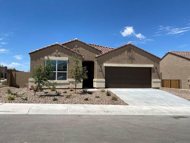 8544 W Pleasant Oak Way Court, Florence, AZ 85132 (MLS #6099619) :: Lucido Agency