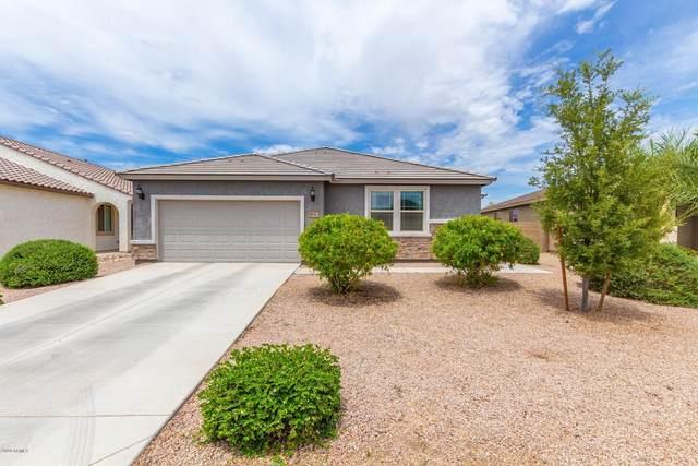 1096 W Santa Gertrudis Trail, San Tan Valley, AZ 85143 (MLS #6100422) :: Service First Realty