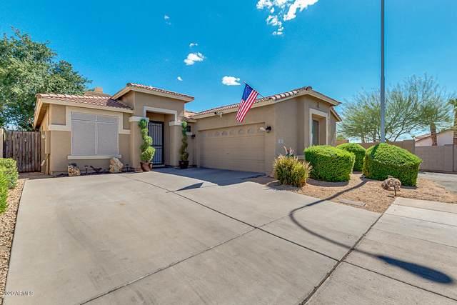 231 W Beechnut Place, Chandler, AZ 85248 (MLS #6100569) :: Long Realty West Valley