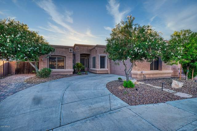 3900 S Emerson Street, Chandler, AZ 85248 (MLS #6100641) :: Lucido Agency