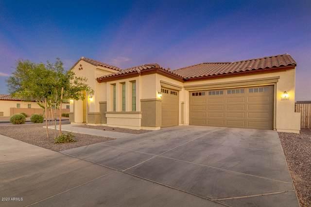20865 E Camina Buena Vista E, Queen Creek, AZ 85142 (MLS #6100789) :: Conway Real Estate