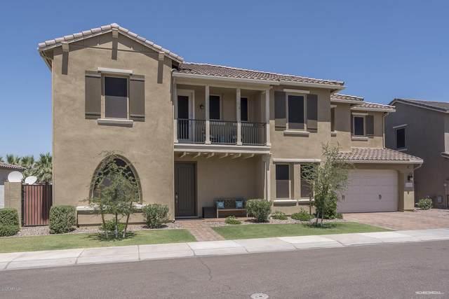 4342 S Gardenia Drive, Chandler, AZ 85248 (MLS #6100793) :: The W Group