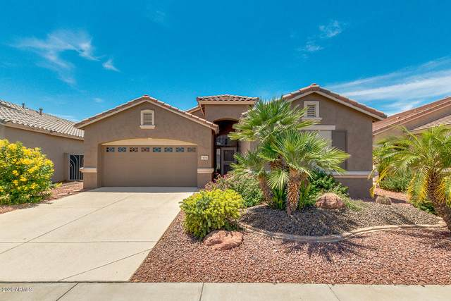 18454 N Coconino Drive, Surprise, AZ 85374 (MLS #6101223) :: Klaus Team Real Estate Solutions