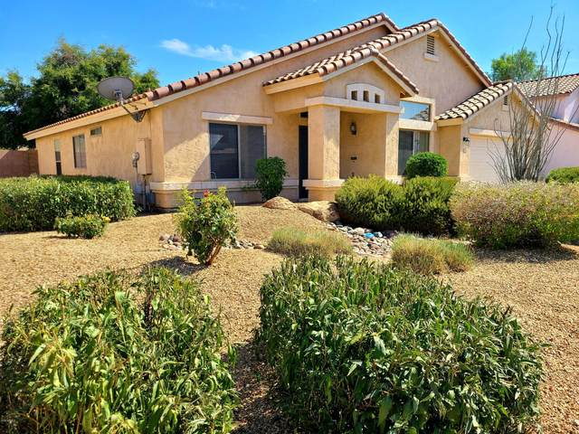 10361 W Piccadilly Road, Avondale, AZ 85392 (MLS #6101390) :: The C4 Group