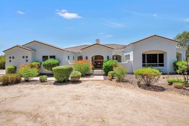 31440 N 44TH Street, Cave Creek, AZ 85331 (MLS #6101420) :: Revelation Real Estate