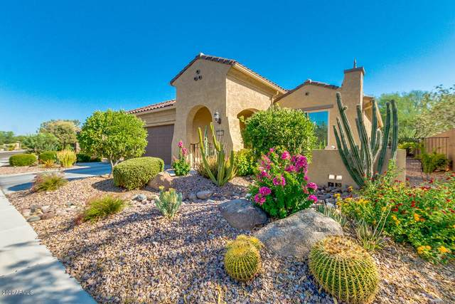 7385 W Silver Spring Way, Florence, AZ 85132 (MLS #6101441) :: Yost Realty Group at RE/MAX Casa Grande