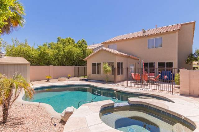 1718 E Pontiac Drive, Phoenix, AZ 85024 (#6101587) :: AZ Power Team | RE/MAX Results