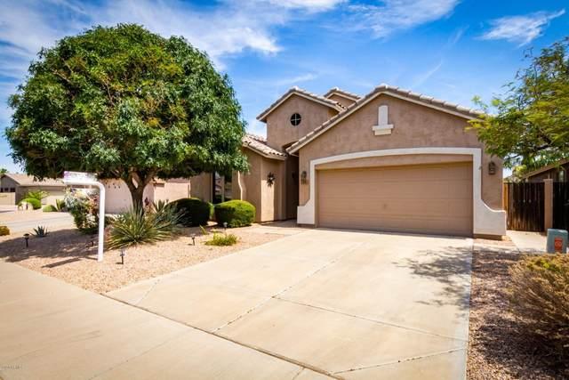 72 E Piccolo Court, San Tan Valley, AZ 85143 (MLS #6101699) :: The C4 Group