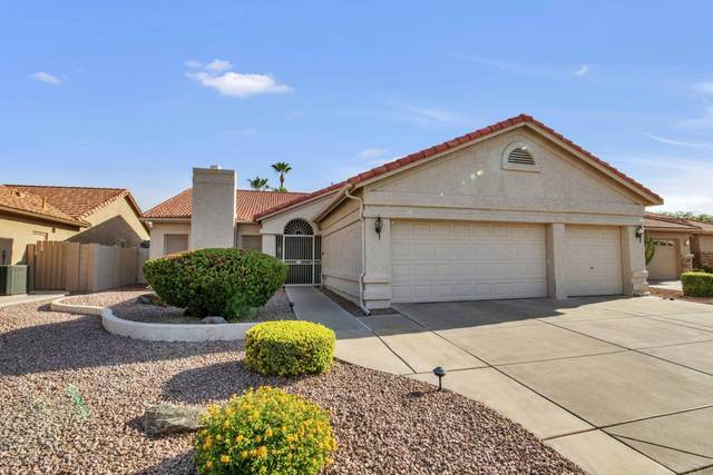 8910 E Coopers Hawk Court, Sun Lakes, AZ 85248 (MLS #6102027) :: Keller Williams Realty Phoenix