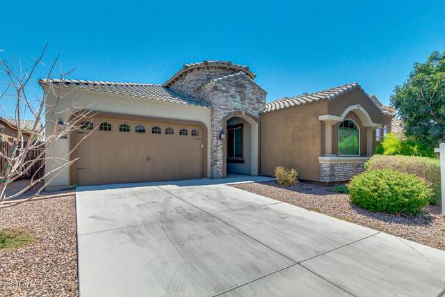255 E Mead Drive, Chandler, AZ 85249 (MLS #6102276) :: The Everest Team at eXp Realty