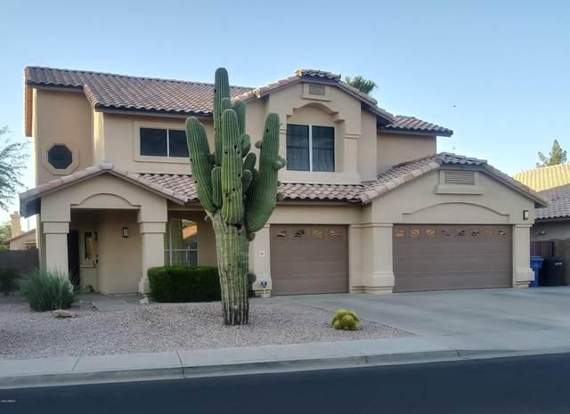 662 W Natal Circle, Mesa, AZ 85210 (#6102447) :: Luxury Group - Realty Executives Arizona Properties