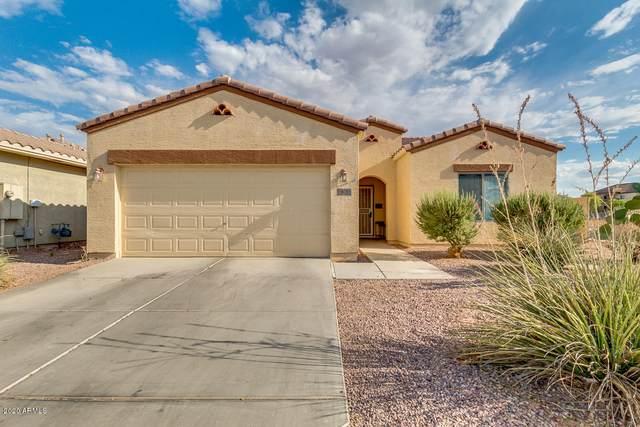 903 E Cactus Wren Drive, Casa Grande, AZ 85122 (MLS #6102494) :: Yost Realty Group at RE/MAX Casa Grande