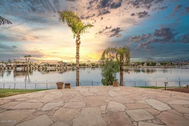 3625 E Woodland Drive, Phoenix, AZ 85048 (MLS #6102586) :: Yost Realty Group at RE/MAX Casa Grande