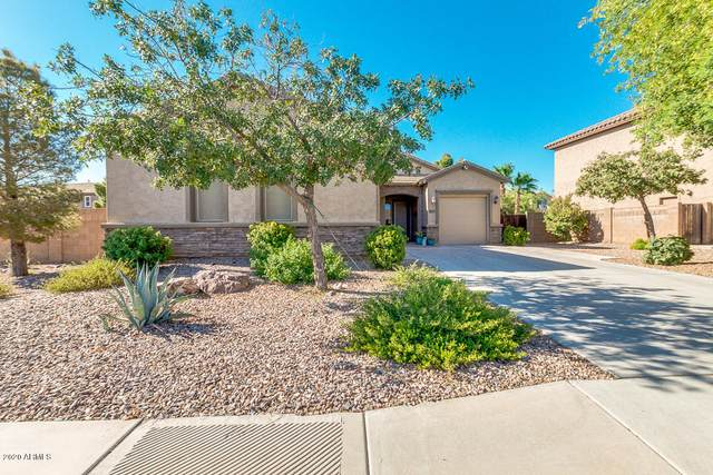 6950 S Crystal Way, Chandler, AZ 85249 (MLS #6103073) :: The Carin Nguyen Team