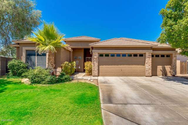 24010 N 66TH Lane, Glendale, AZ 85310 (MLS #6103645) :: The Everest Team at eXp Realty