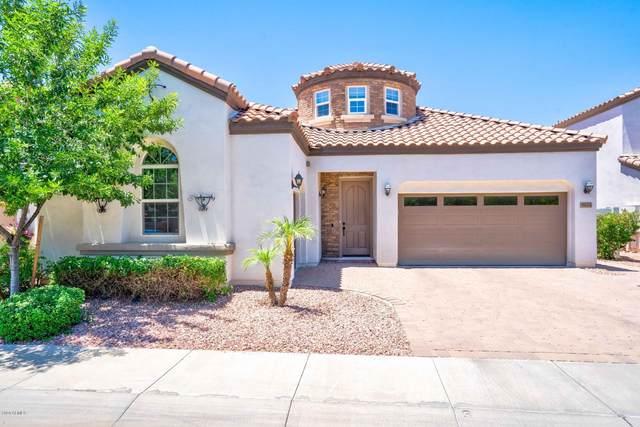 4644 N 29TH Street, Phoenix, AZ 85016 (MLS #6103831) :: My Home Group