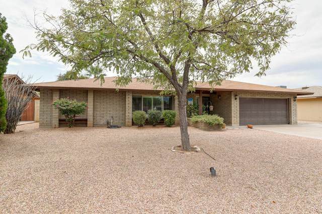 1613 E Watson Drive, Tempe, AZ 85283 (MLS #6105442) :: Klaus Team Real Estate Solutions